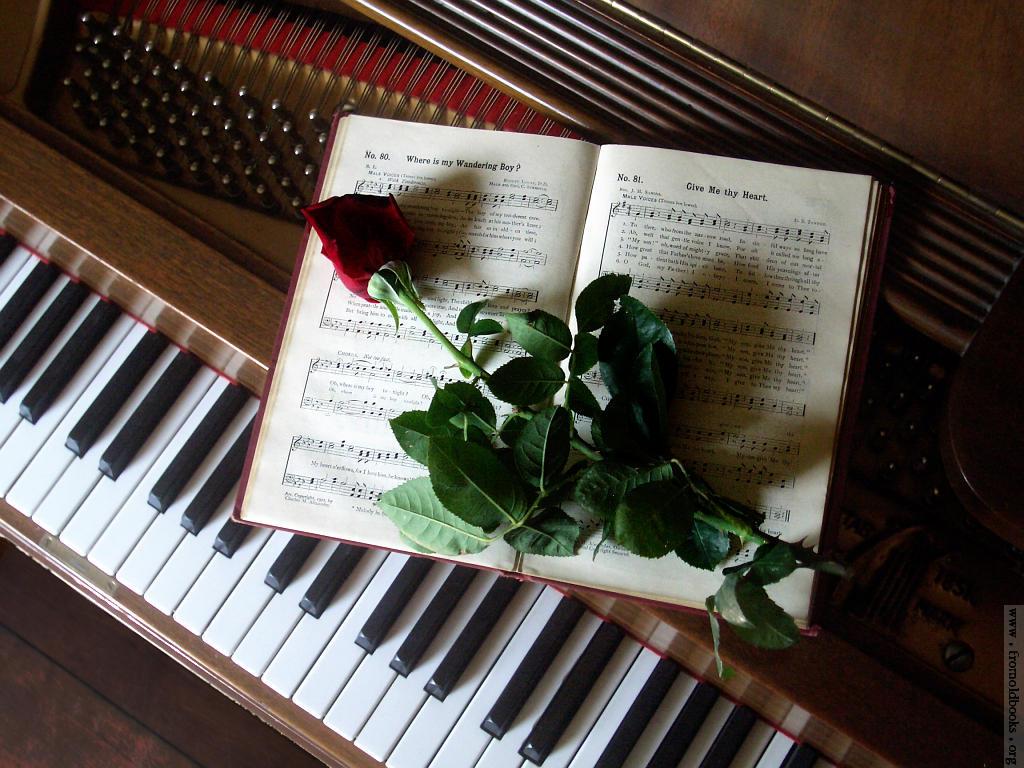 ピアノ講師 内田明日香